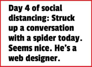conversation with a spider